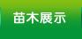 万博manbetx官网在线登录展示